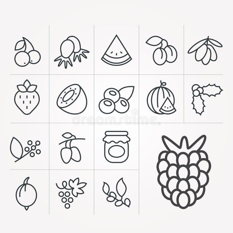 Set ikony z jagodami ilustracji
