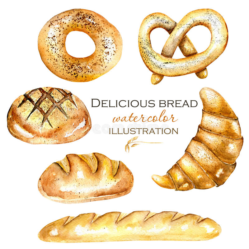 Download Set Illustration Collection With Watercolor Bakery Products Bagel Loaf French Baguette Stock
