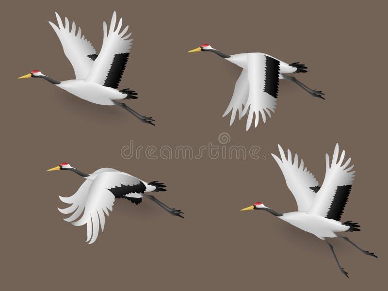Set of Illustration Japanese Crane Birds Flying royalty free illustration