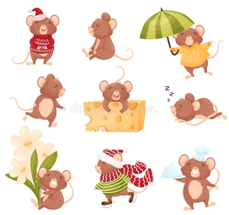 Set of images of cute mice. Vector illustration on white background. vector illustration