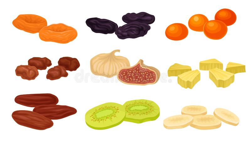 Set of images of various dried fruits. Vector illustration on white background. vector illustration