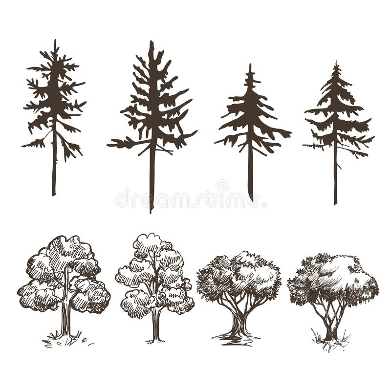A set of images of various trees. Deciduous and coniferous. Sketches and silhouettes. royalty free illustration