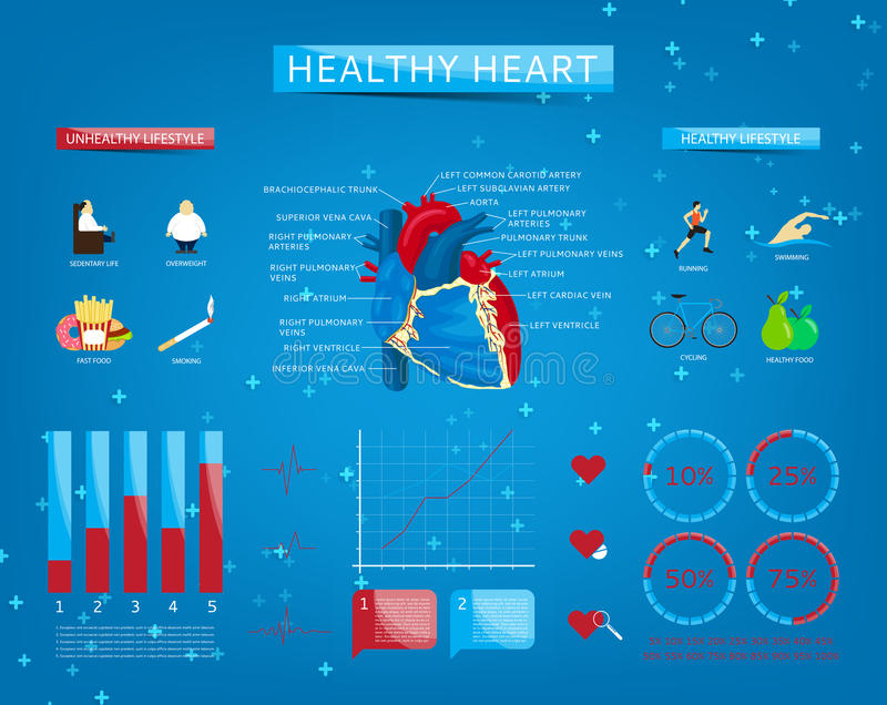 Set of infographics about healthy heart royalty free illustration