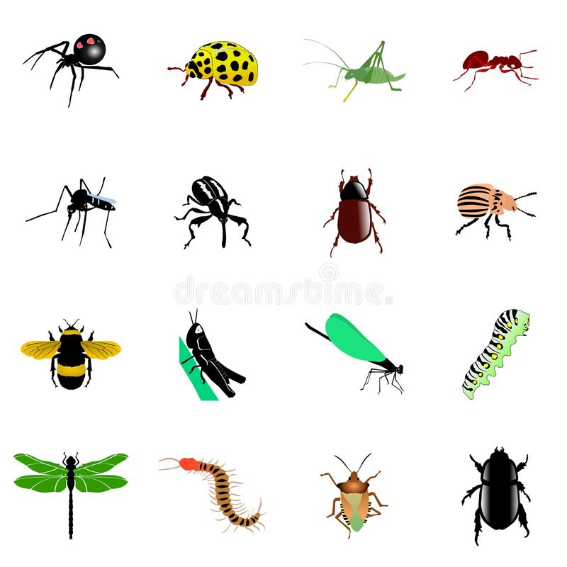 Set of insects. Set of vector illustration of insects stock illustration