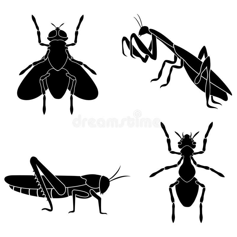 A set of insects consists of an ant, a fly, a mantis and a locus. A set of insects consists of black and white silhouettes of an ant, a fly, a mantis and a vector illustration