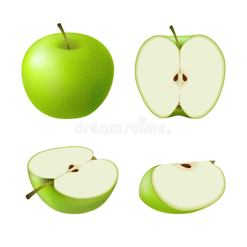 Set of isolated colored green apple half, slice and whole juicy fruit on white background. Realistic fruit collection. stock illustration
