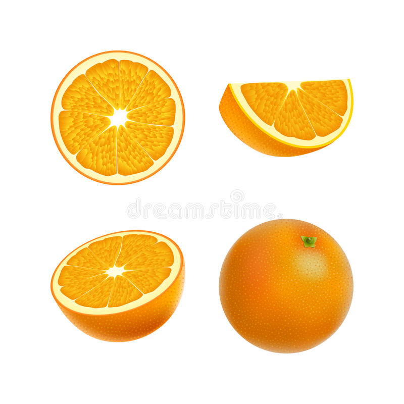 Set of isolated colored orange, half, slice, circle and whole juicy fruit on white background. Realistic citrus collection. royalty free illustration