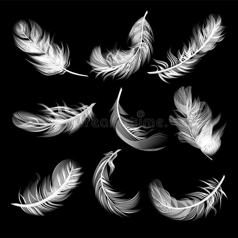 Set of isolated falling white fluffy twirled feathers in realistic style on black background stock illustration