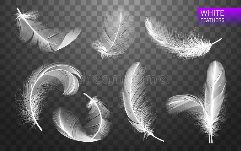 Set of isolated falling white fluffy twirled feathers on transparent background in realistic style. Vector Illustration royalty free illustration