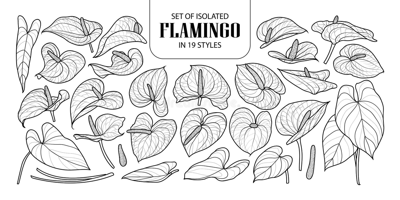 Set of isolated Flamingo in 19 styles. Cute hand drawn flower vector illustration in black outline and white plane. vector illustration