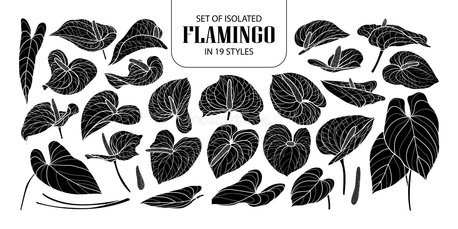 Set of isolated silhouette Flamingo in 19 styles. Cute hand drawn flower vector illustration in white outline and black plane. vector illustration