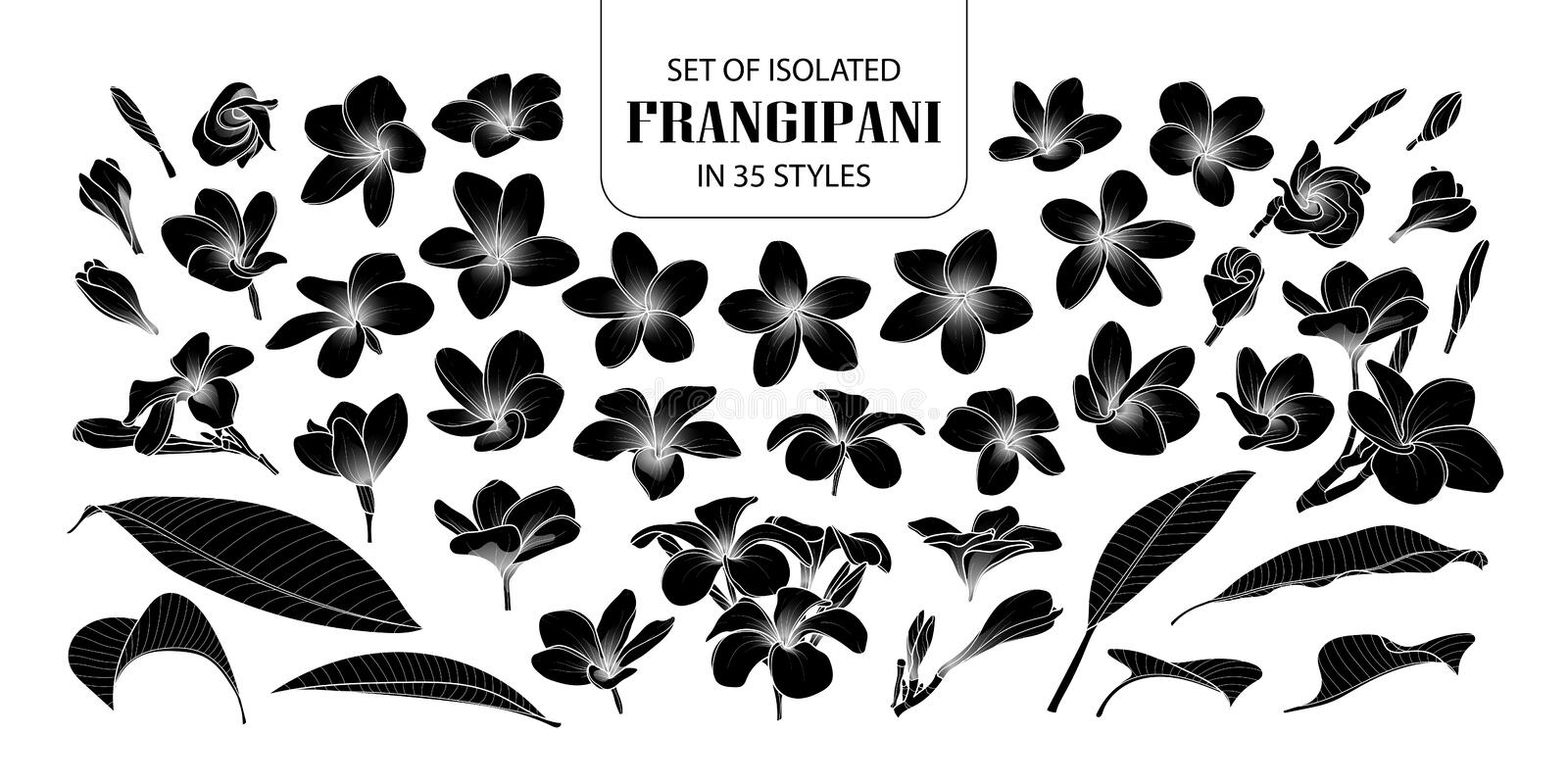 Set of isolated silhouette frangipani in 35 styles. stock illustration