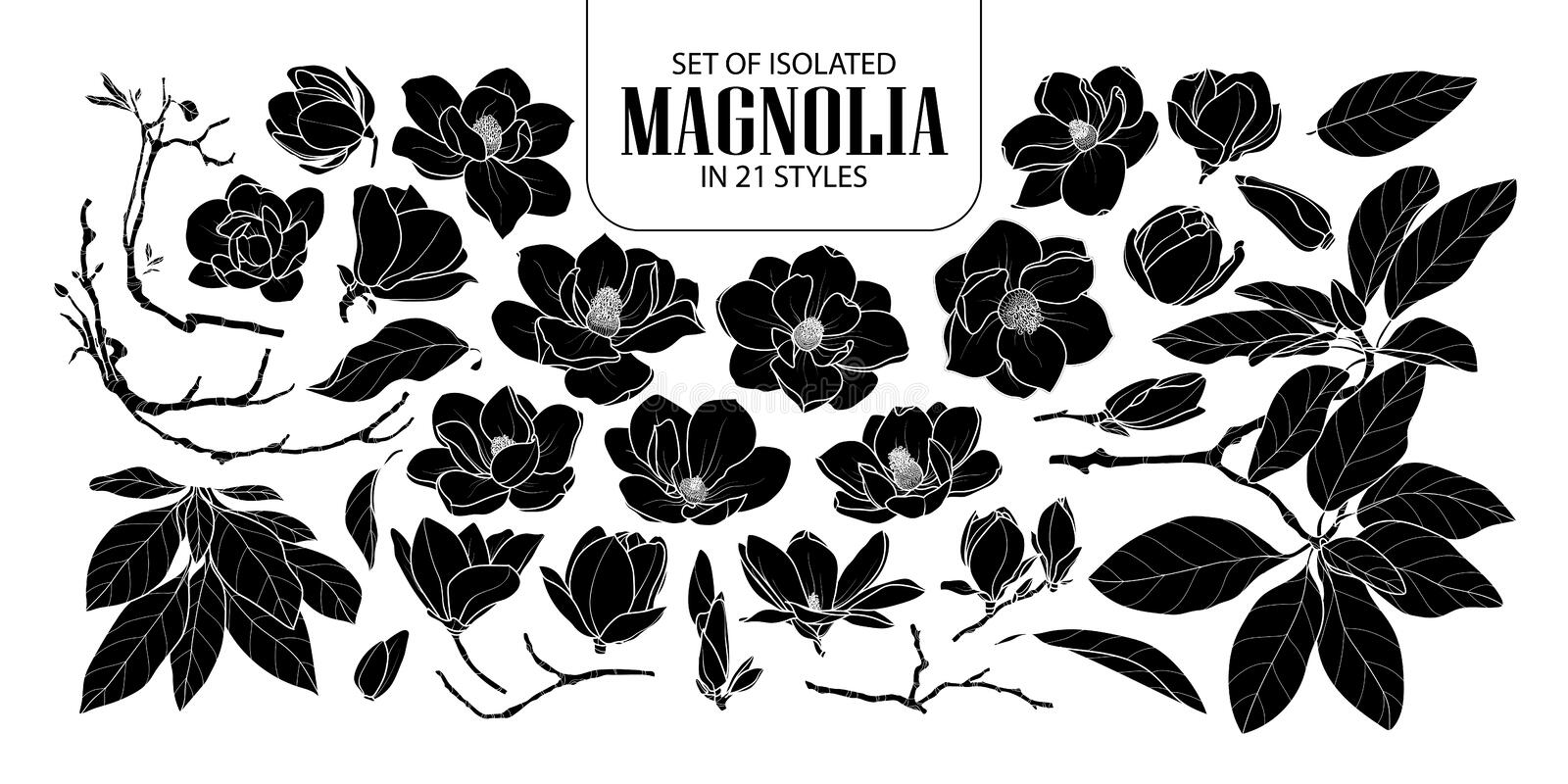 Set of isolated silhouette magnolia in 21 styles. Cute hand drawn flower vector illustration in white outline and black plane. royalty free illustration