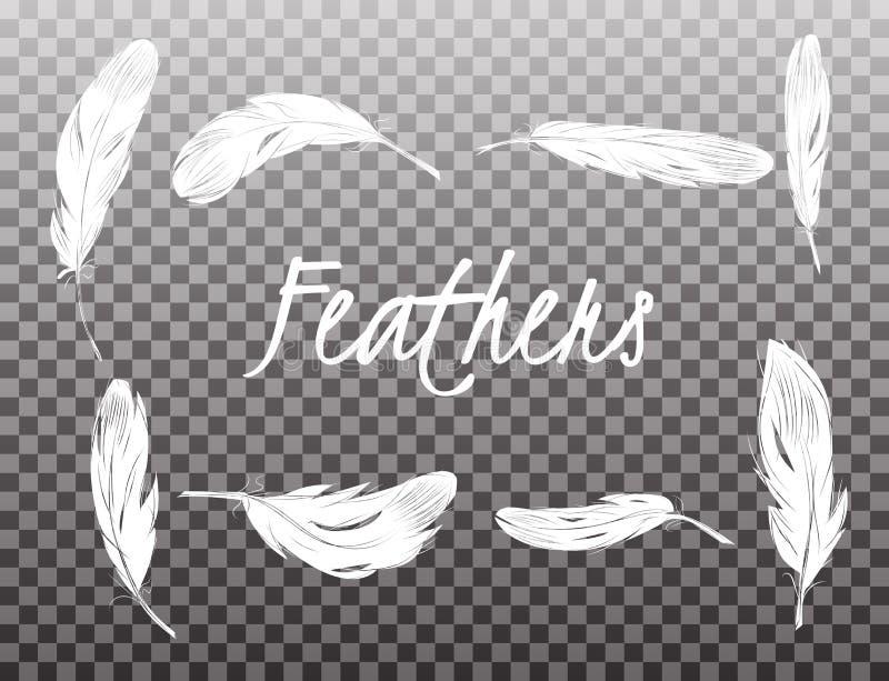 Set of isolated white feathers on transparent background royalty free illustration
