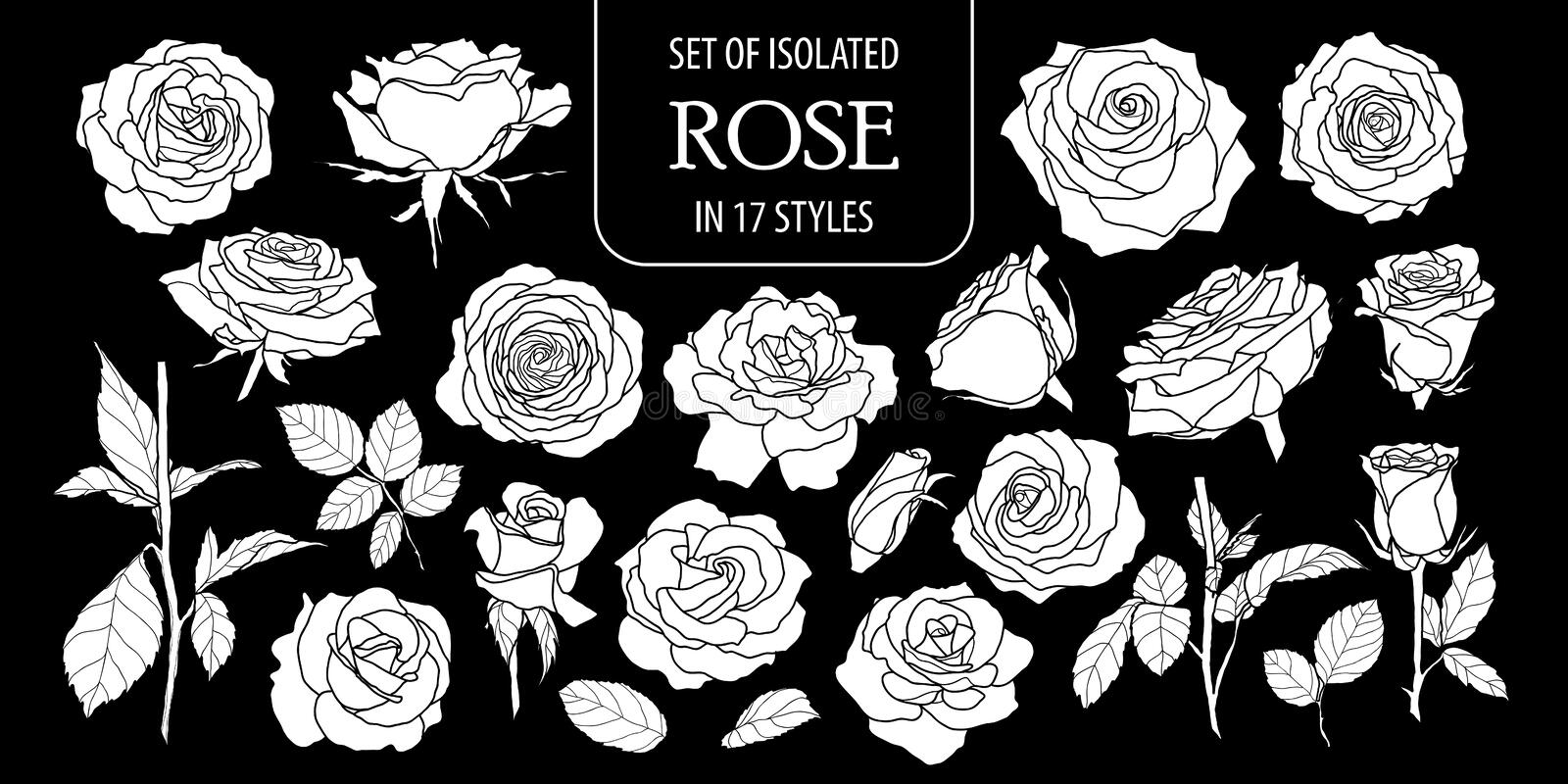 Set of isolated white silhouette rose in 17 styles .Cute hand drawn flower vector illustration in white plane and no outline. vector illustration