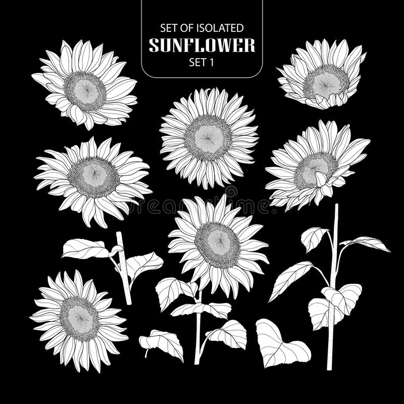 Set of isolated white silhouette sunflower set 1. stock illustration
