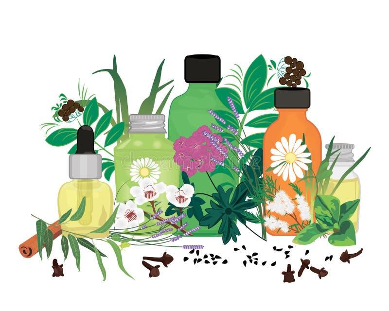 Set istotnych olejów wektoru ilustracja ilustracji