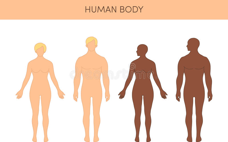 Set istoty ludzkie royalty ilustracja