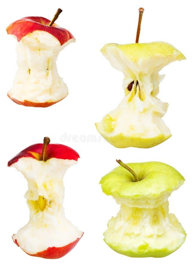 Set jabłek sedno odizolowywający na bielu obraz royalty free