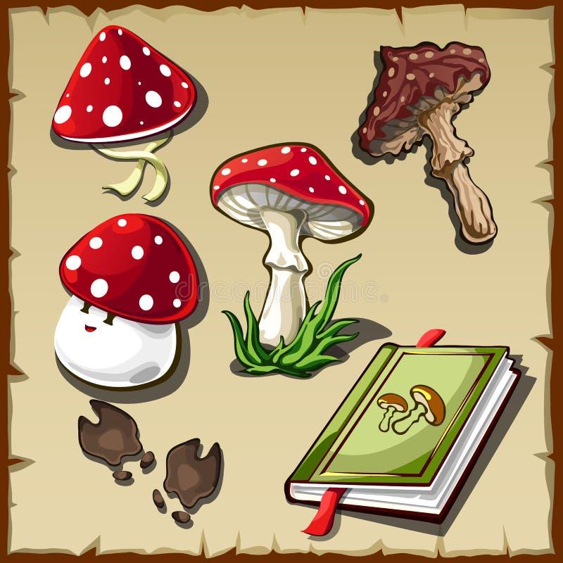 Set jadowite pieczarki i książka kucharska ilustracji