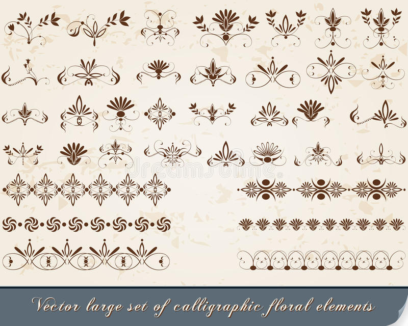 Set kalligraphische Auslegungelemente lizenzfreie abbildung