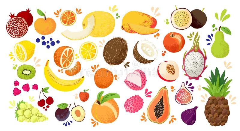 Set kolorowe ręka remisu owoc tropikalne słodkie owoc i cytrus owoc ilustracja -, Apple, bonkreta, pomara?cze, banan royalty ilustracja