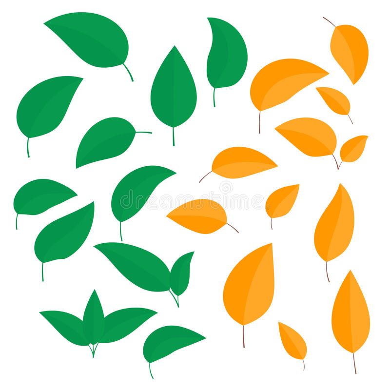 Set kolorowi liście w lecie i jesieni inaczej fryzował odosobnionego na białym tle ilustracja wektor