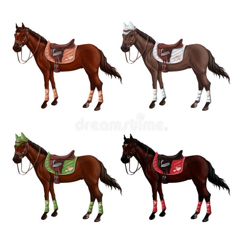 Set konie różni kostiumy w różnych amunicjach dla skakać - comber, nakrętka, uzda, kantar, wagtrap, stempluje royalty ilustracja