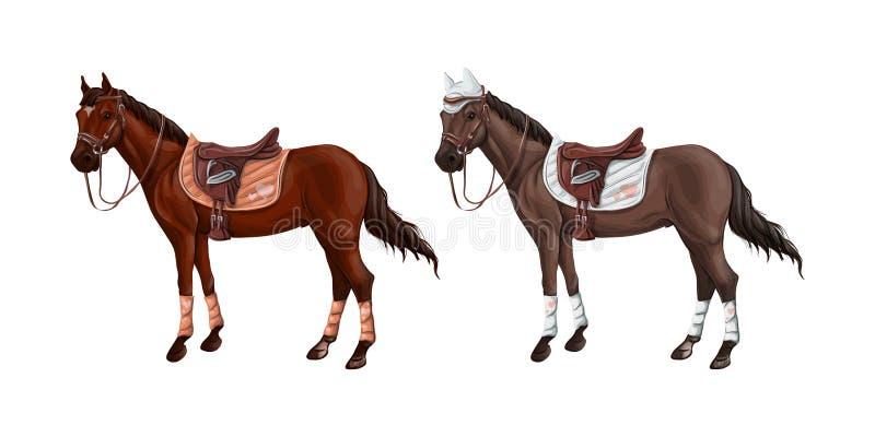 Set konie różni kostiumy w różnych amunicjach dla skakać - comber, nakrętka, uzda, kantar, wagtrap, stempluje _ ilustracja wektor