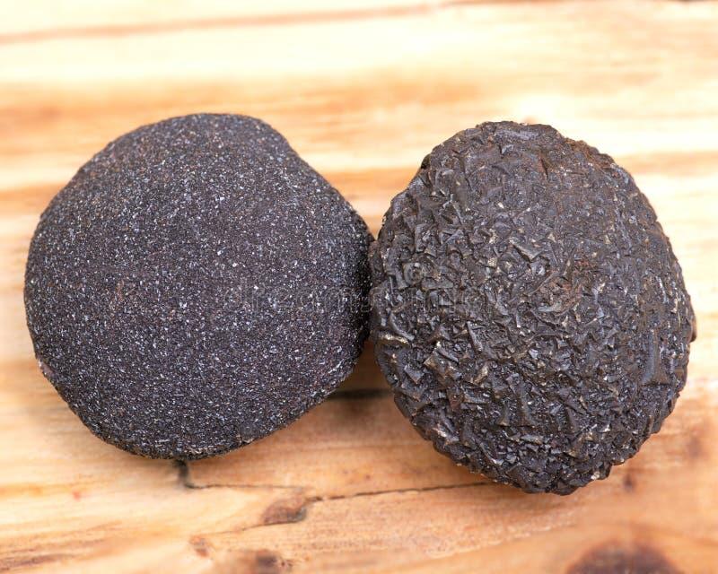 Set konkrecja kamienie od południowo-zachodni Kansas, usa Kansas wystrzału skały na drewnianym tle fotografia stock