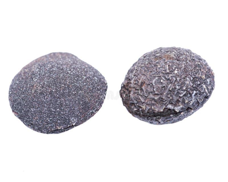 Set konkrecja kamienie od południowo-zachodni Kansas, usa Kansas wystrzału skały odizolowywać na bielu Zawiera samiec krystalizuj fotografia royalty free