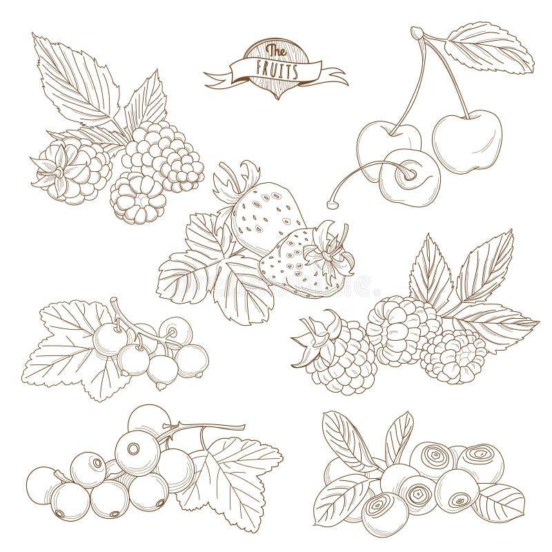 Set kontur ręki rysować jagody (czernica, wiśnia, strawber ilustracja wektor