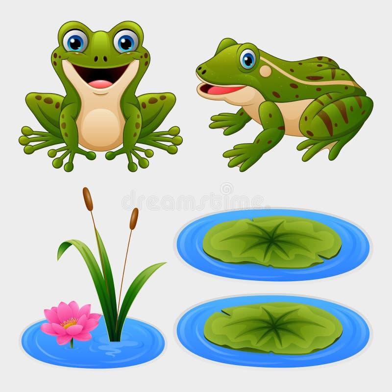 Set kreskówki żaba i wodna leluja ilustracja wektor