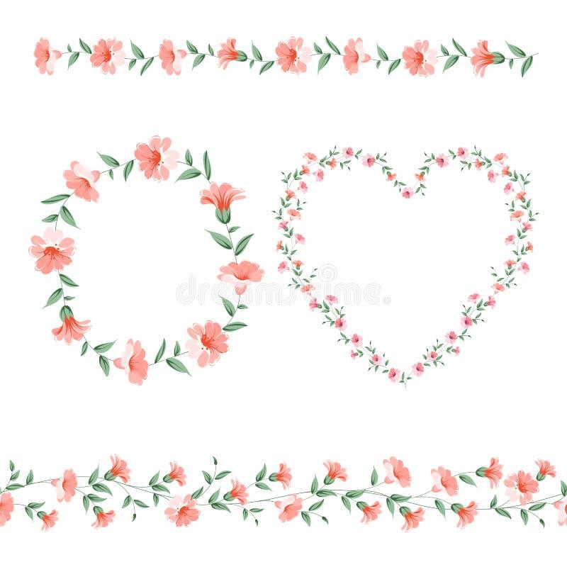 Set kwiat ramy ilustracja wektor