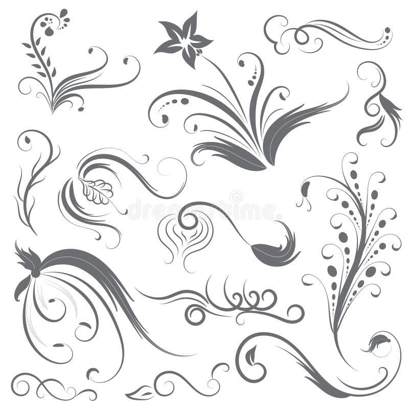 Set kwiatu kaligraficzny projekt ilustracja wektor