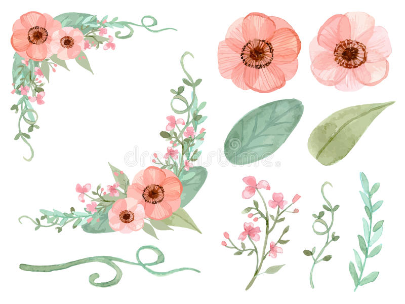 Set kwiaty i liście wektorowi ilustracja wektor