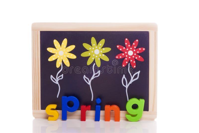 Set kwiaty na blackboard - wiosna fotografia stock