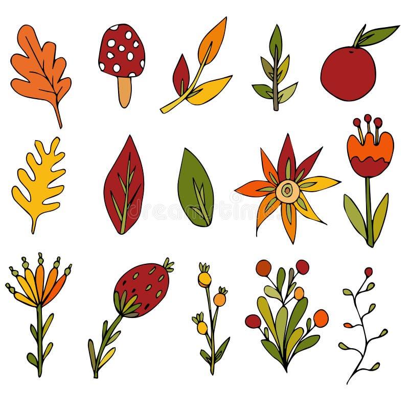 Set kwiaty, rozgałęzia się i opuszcza Jesieni dekoracyjne ilustracje na odosobnionym białym tle Element dla projekta ilustracji