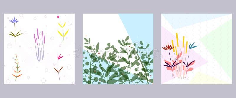 Set kwiecista karta z abstrakcjonistycznymi pociągany ręcznie kwiatami ilustracji