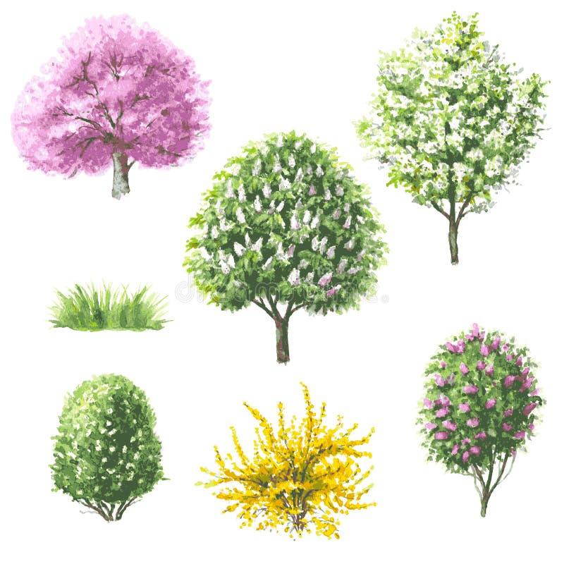 Set kwitnący drzewa i krzaki ilustracji