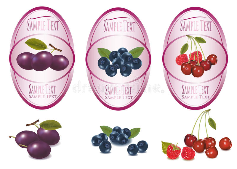 Set of labels with berries and fruit. stock illustration