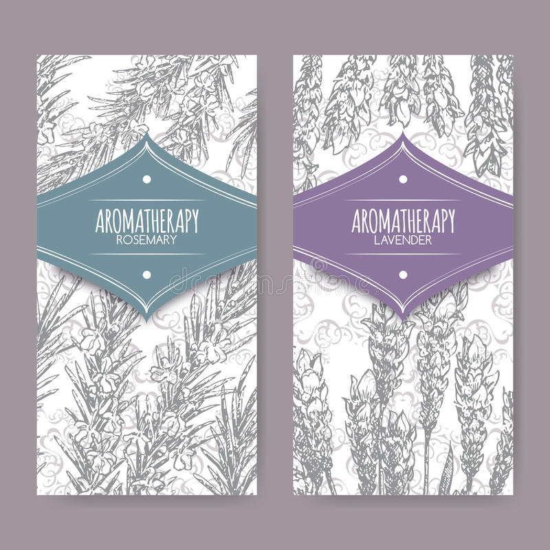 Set of 2 labels with lavender and rosemary. On elegant lace background. Aromatherapy series. Great for traditional medicine, perfume design, cooking or vector illustration