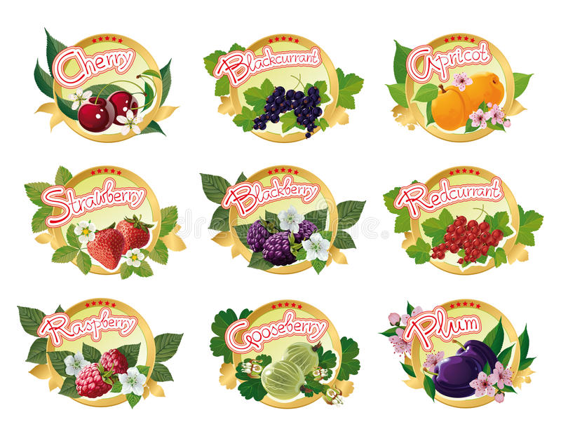 Download Set Of Labels For Marmalade Stock Photo - Image: 28550520