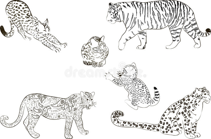 Download A Set Of  Large Predatory Cat Stock Photography - Image: 29569952
