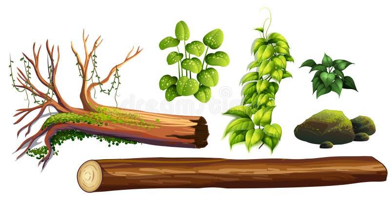 Set Lasowy element ilustracja wektor