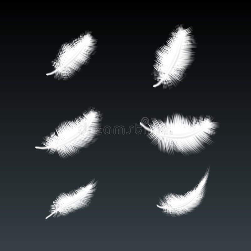 Set Latać Białych gąsek piórka ilustracji