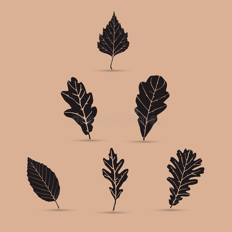 Set of leafs, silhouettes vector illustration