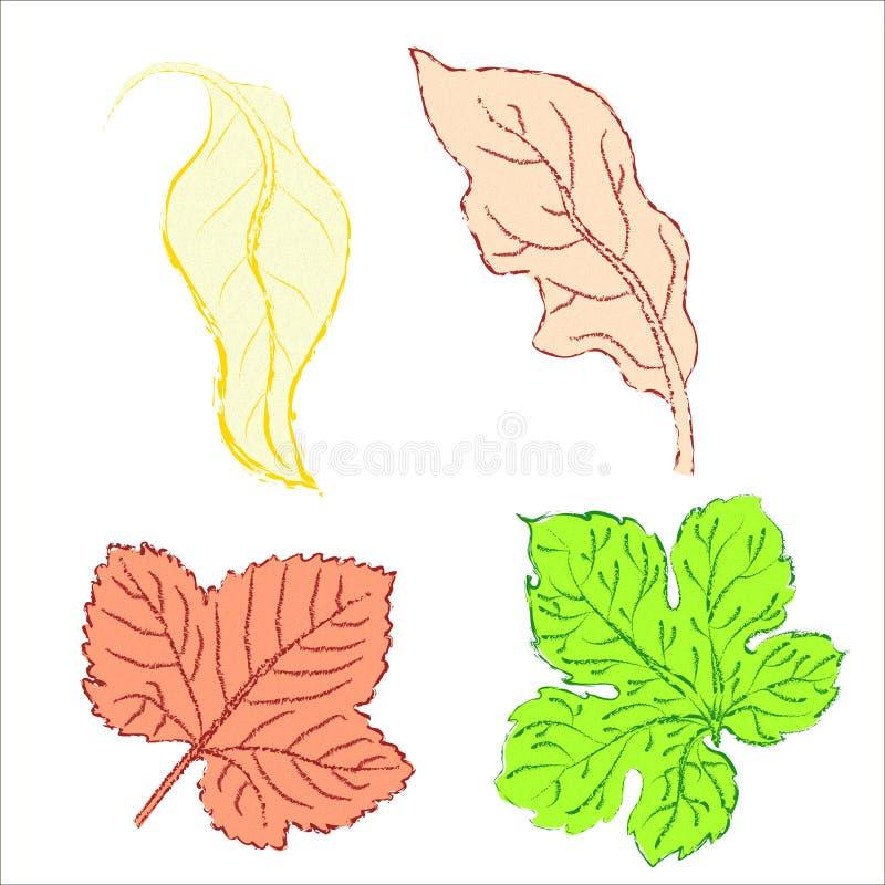Set leaves. Of multicolored. Vector illustration. EPS 10 stock illustration