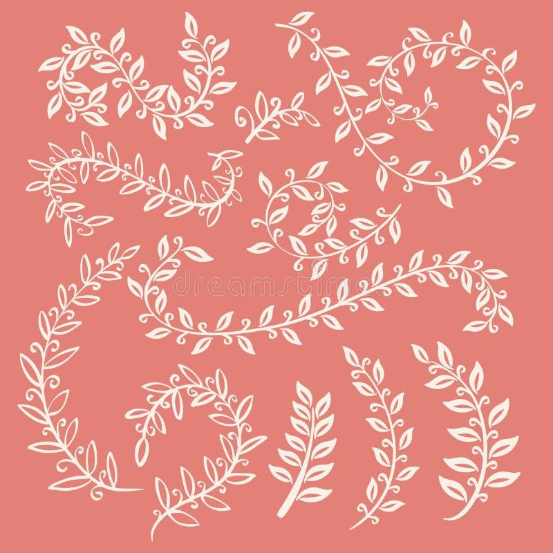 Set of leaves vector on pink background design elements. Set of leaves vector on pink background art design elements vector illustration