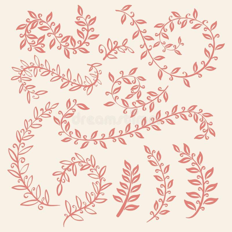 Set of leaves vector on pink background design elements. Set of leaves vector on pink background art design elements royalty free illustration